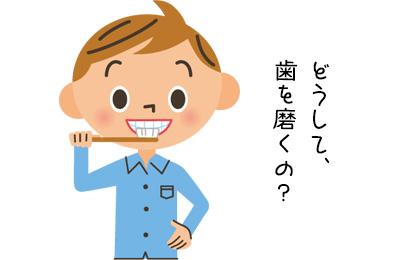 歯磨きは食前、食後のどちらにした方がよいの?